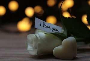 Te quiero – Jaime Sabines